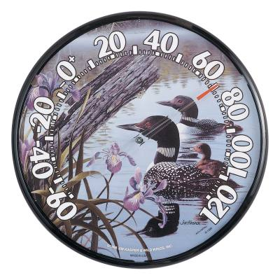 12.5 inch Indoor/Outdoor Loons Thermometer