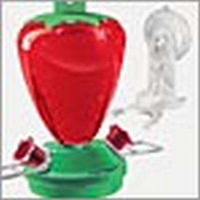 Strawberry Window Feeder 12oz