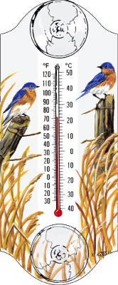 Bluebird  Window Thermometer