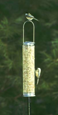 Peanut Silo Bird Feeder,  Medium