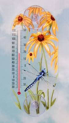 Dragonfly Window Thermometer