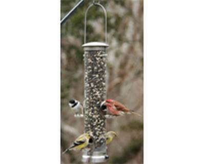 Seed Tube Large Brushed Nickel Quick Clean Base