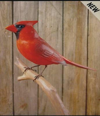 Cardinal Backyard Carving