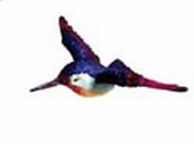 Hummingbird Window Magnet CC52001