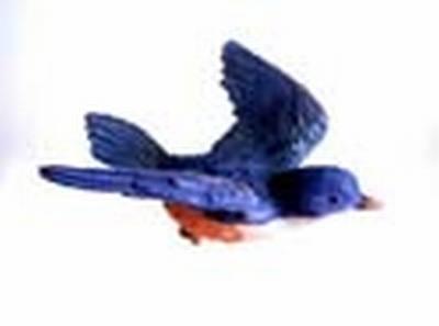 Blue Bird Window Magnet CC52005