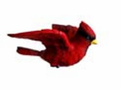 Cardinal Window Magnet CC52020