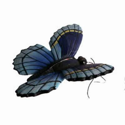 Blue Butterfly CC52035