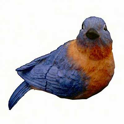 Eastern Blue Bird Window Magnet CC52066