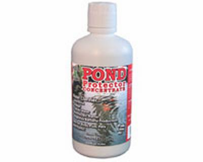 Pond Protector Concentrate 32 oz.