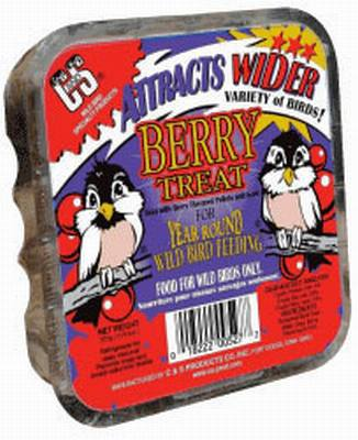 Berry Treat Wild Bird Suet Cake 11.75 oz.