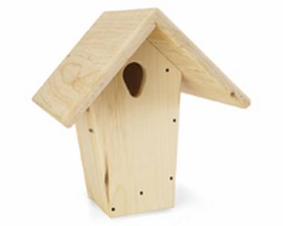 12in. Plain Bluebird Nest Box