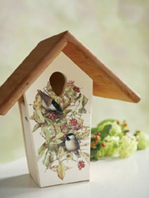 10in. Bird Illustration Nest Box