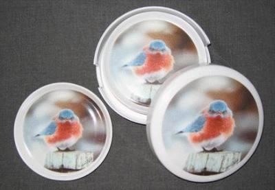 Mad Bluebird Coaster Set