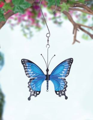 Butterfly Blue Large