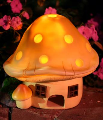 Toadstool Toad Abode