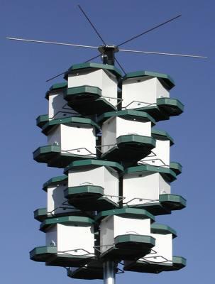 Martin Housing Pod (4 units w/pod)