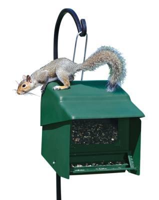 Super Stop-A-Squirrel Wild Bird Feeder