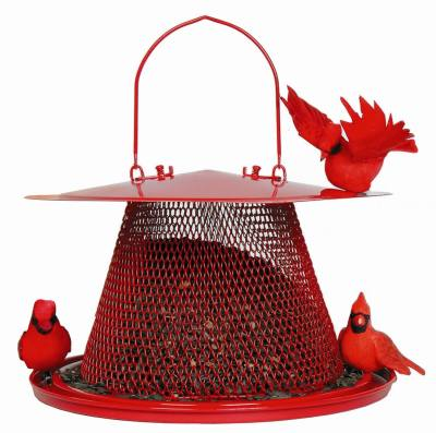 Red Cardinal Feeder