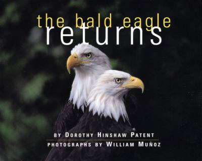 The Bald Eagle Returns