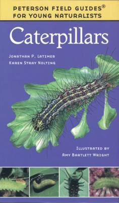 Young Naturalist Caterpillars
