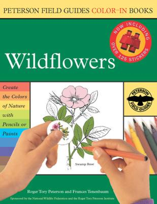 Wildflower Color-In-Book