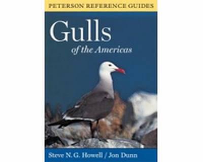 Gulls Of The Americas