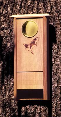 Bat Bungalow