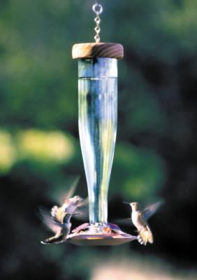 Crystal Clear Glass Hummingbird Lantern Feeder