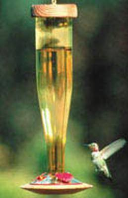 Gold Non-etched Glass Hummingbird Lantern Feeder