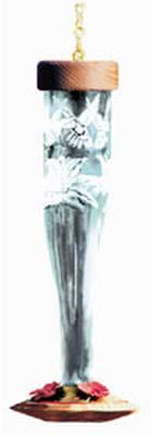 Paradise Tri-Etched Crystal Glass Hummingbird Lantern