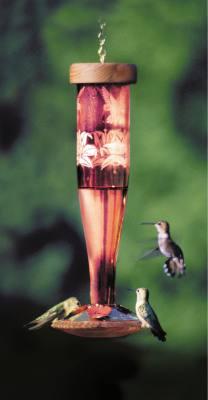 Paradise Tri-Etched Ruby Glass Hummingbird Lantern