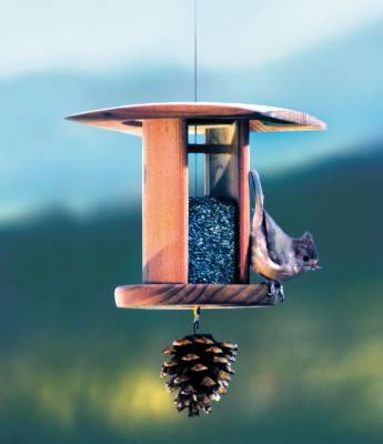 Songbird Lantern Nyger Bird Feeder