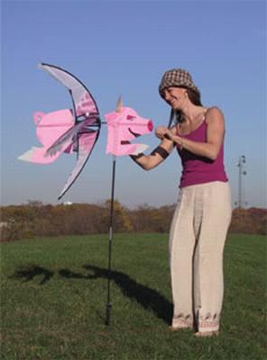 Flying Pig Spinner