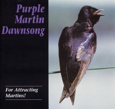 Dawn Song CD – Purple Martin Attractors