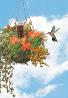 Hummingbird Accent Basket Planter Feeder