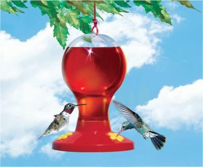 Plastic Hummingbird Feeder w/Nectar 16 oz