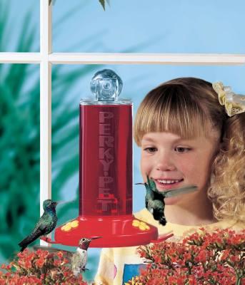 Window Hummingbird Feeder 8 oz