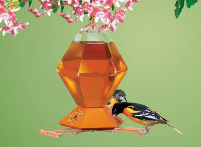 Hexagon Oriole Feeder, 36 oz.