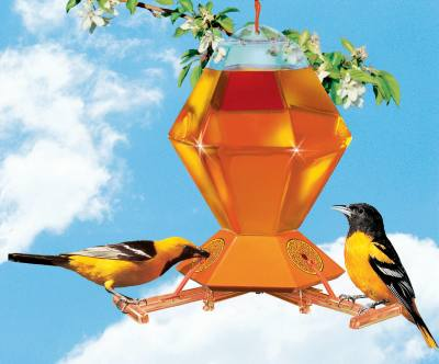Deluxe Hexagon Oriole Feeder w/ Bee Guard, 36 oz