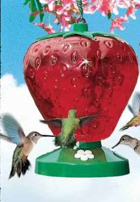 Strawberry Hummingbird Feeder 48 oz