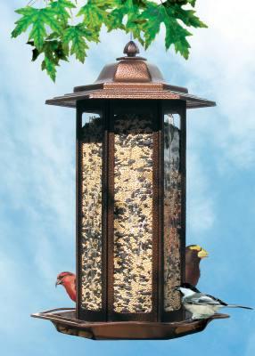 Tall Tulip Garden Lantern Bird Feeder