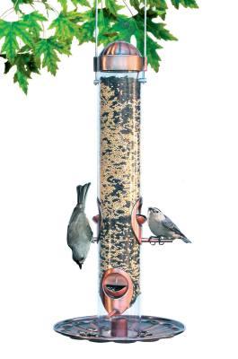Festival 2-in-1 Bird Feeder, Copper