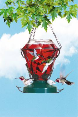 Hummingbird Edition Feeder, 24 oz capacity