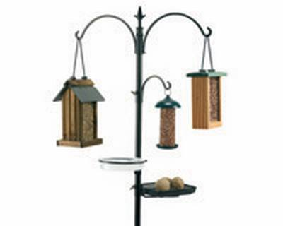 Wild Bird Feeding Station Kit