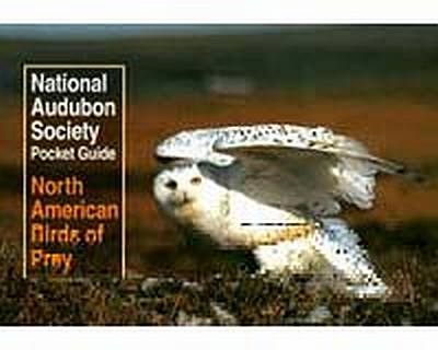 Audubon NA Bird of Prey