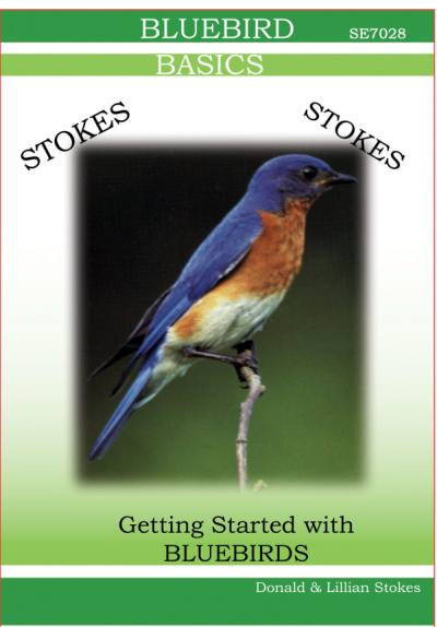 Stokes Bluebird DVD Video
