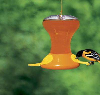 Fliteline Junior 30 oz. Oriole Feeder
