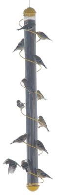 36in. Yellow Spiral Finch Tube