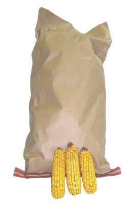 Squirrel Food , Ear Corn Cob  – 25# Bag