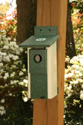 Bluebird Nesting Box Two Toned Ivory/Green